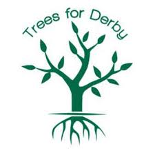 Trees for Derby logo